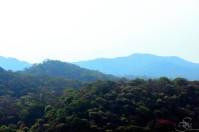 Sanjay Gandhi National Park2